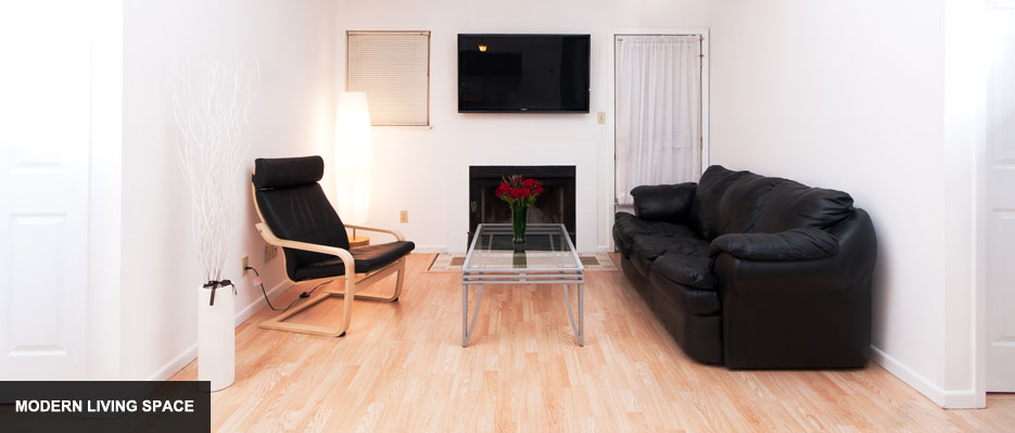 Fully Furnished Champaign Apartment with Modern Living Space & Fireplace